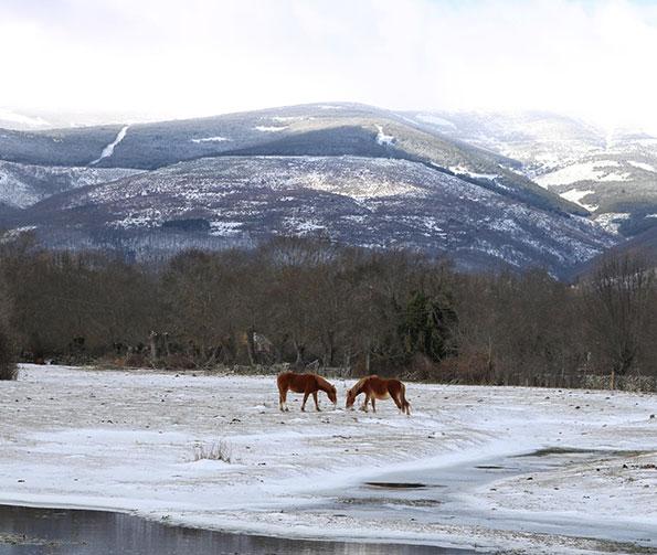 praderas en invierno alameda del valle