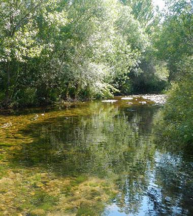 rio lozoya en alameda del valle